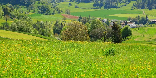 Durch den Aargau von Herznach nach Brugg.