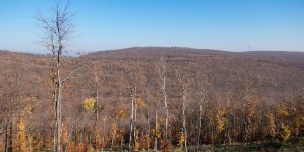 Előttünk a Sztaravoda-patak völgye túránk legmagasabb pontján