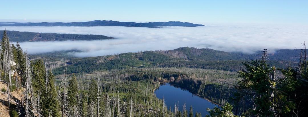 Blick zum Plöckensteinsee im Abstieg zum See