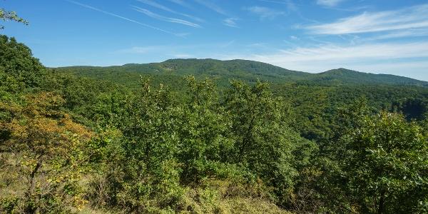 Kilátás a Nagy-Inócra, balra a Nagy-Hideg-hegy (Száraz-fa-bérc)