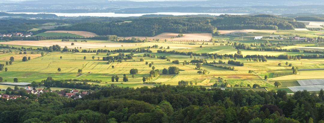 Blick von Heiligenberg