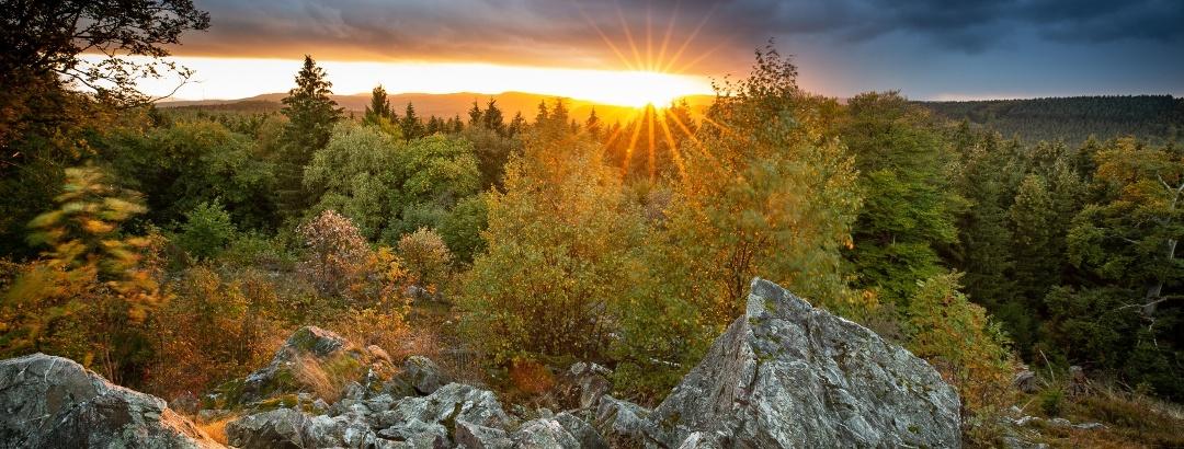 Aussicht vom Wehlenstein im Nationalpark