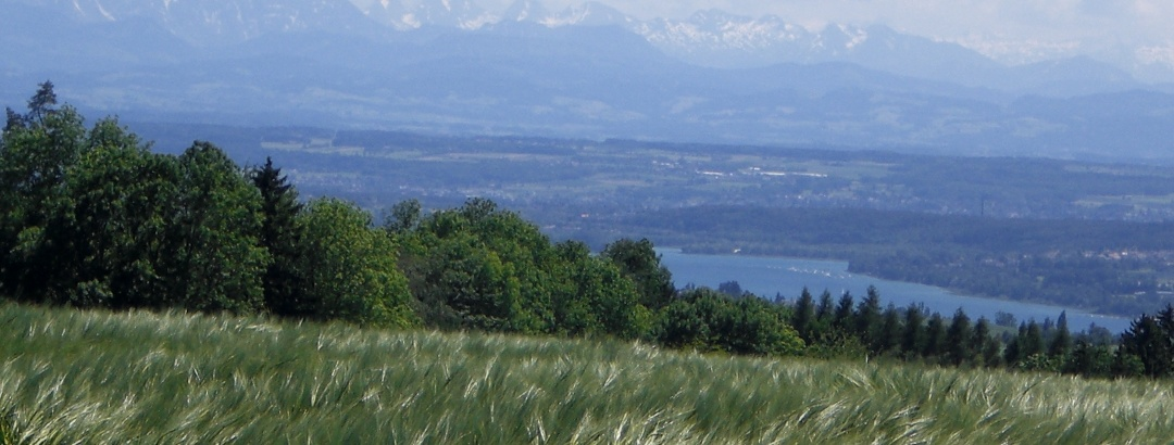 Ausblick von Wälder Höhe bei Herdwangen