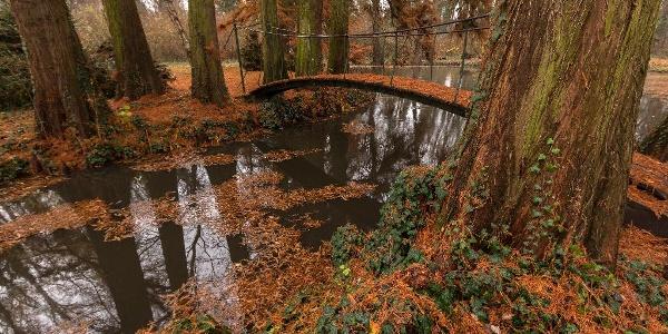 A szabadkígyósi Wenckheim-kastély parkja ősszel