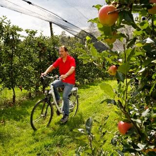 Radfahren entlang der Steirischen Apfelstraße