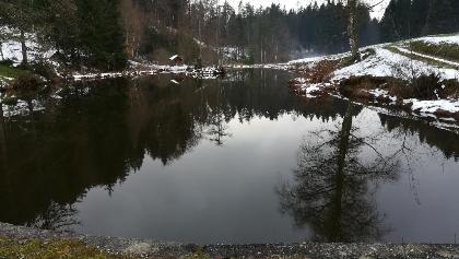 beschaulicher Teich in der Ortschaft Lippitz mit Blick nach Westen