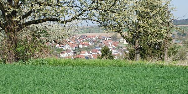 Blick auf Kraichtal-Oberöwisheim