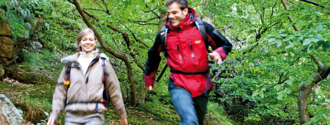 Wandern auf dem Harzer-Hexen-Stieg