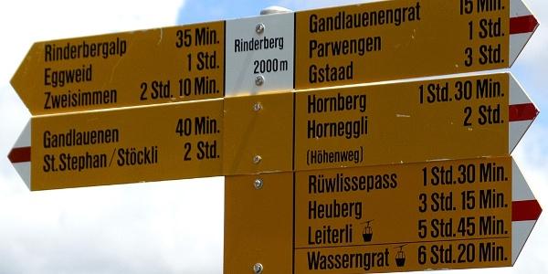 Wegweiser bei der Bergstation auf dem Rinderberg.