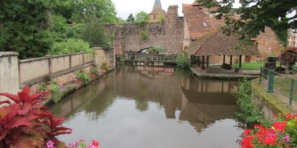 Waschhaus an der Lauter in Wissembourg