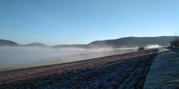 zwischen Waldrand und Feldern Richtung  Prießnitzer Mulde
