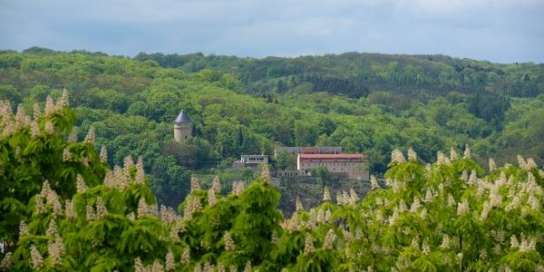 Blick auf das ehemalige Schloss Osterstein