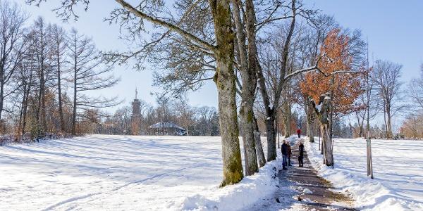Winterwandern auf dem Freudenstädter Kienberg