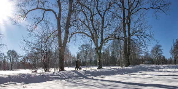 Winterwandern auf dem Kienberg Freudenstadt