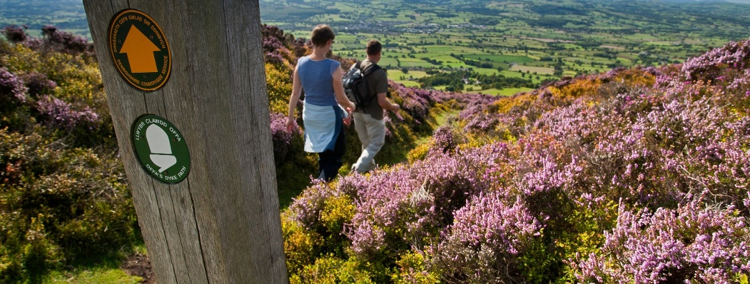Clwydian Range im Nordosten von Wales