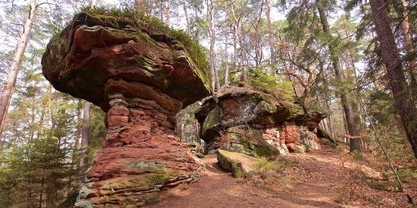Hexenpilz und Satanbrocken an der Burg Neudahn-Tour