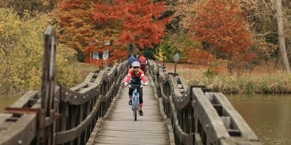 Az arborétumba vezető híd