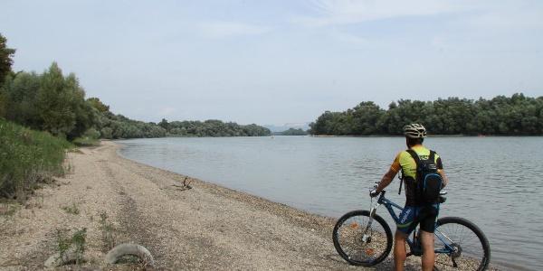 Dunapart Leányfalu mellett - a háttérben a Naszály tömbje látszik