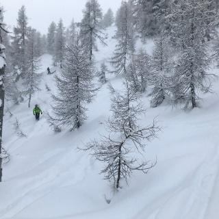 auch im Wald schon viel Schnee