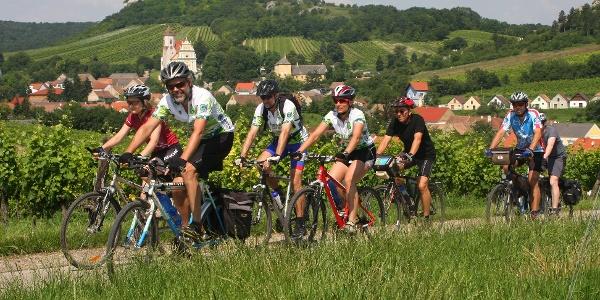 Radfahren im Weinviertel
