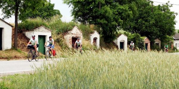 Radfahren durch die Weinviertler Kellergassen