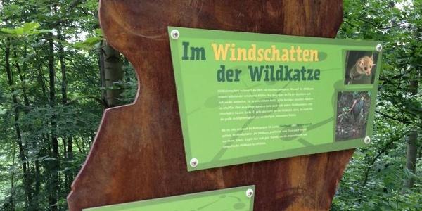 Wildkatzen Lehrpfad