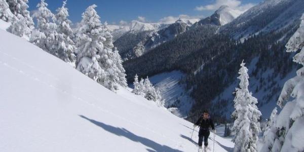 Schneeschuhparadies Hinteralm
