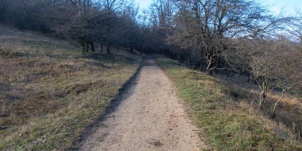 Kényeztetően könnyű, apró zúzalékos ösvény pihenésképpen