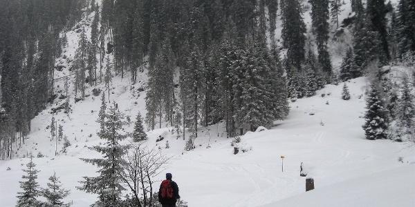 Kastensteig über Waldsteilstufe