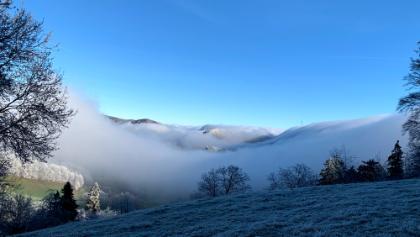 Aufstieg zur Sahlhöhe. Schauspiel Sonne-Schatten-Nebel