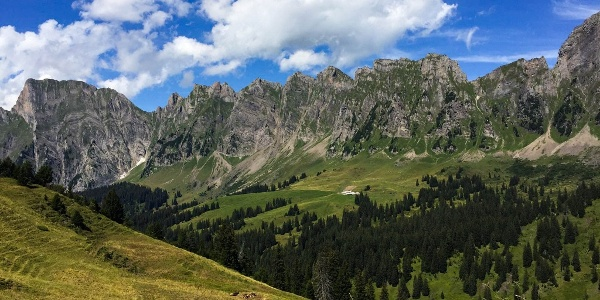 Berge Palfries