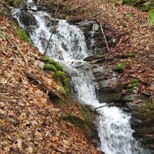 Abstieg am Molesbach entlang