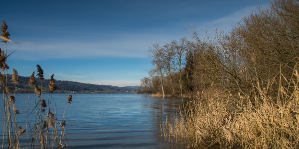 Blick zurück Richtung Aargau