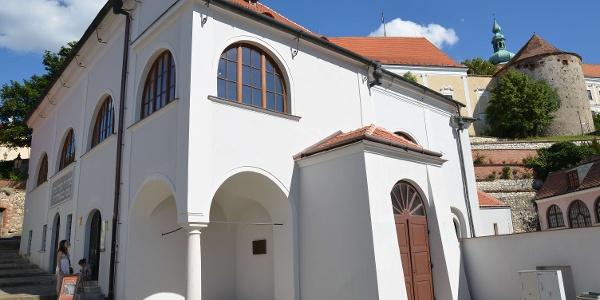 Horní synagoga v Mikulově