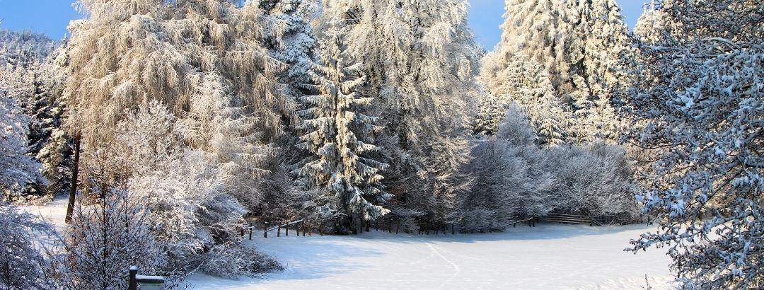 Winter in der Medebacher Bucht