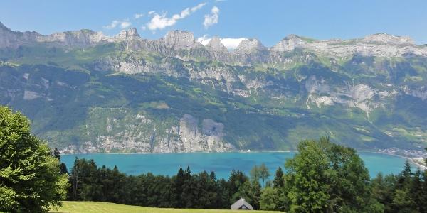 Panorama mit Churfirsten und Walensee