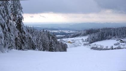 Abfahrt: Gipfelhang von ca. 860 m bis 730 m