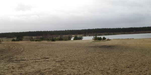 Oude zandwining in de Sahara van Bossland in Lommel