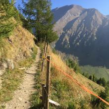 Aufstieg zur Wilden Kreuzspitze