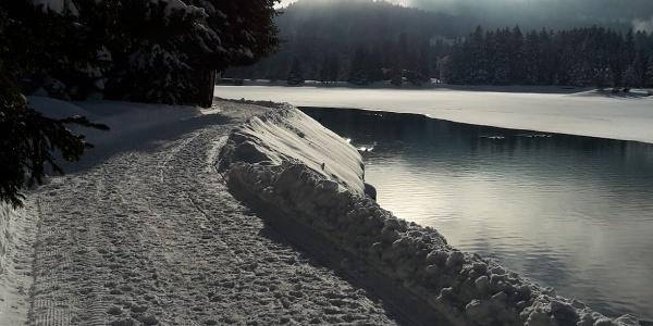 Winterwandern am Heidsee