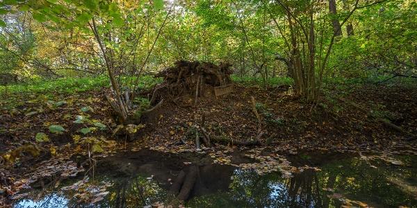 A Tiszta-víz-forrás természetes medencéje