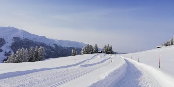 Winterwunderland am Mittelberg
