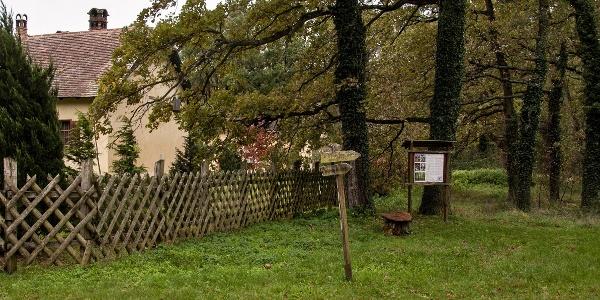 Esterházy Erdészeti Erdei Iskola és Oktatási Központ melletti útjelző táblák