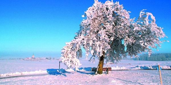 Winterstimmung bei Heiligenberg