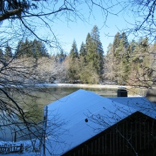 Hütte am See im Dollenbruch