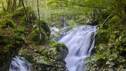 Le rapide nel Boschetto acquatico Šunik