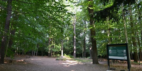 Cottas Grab am Heimatlehrpfad Tharandt