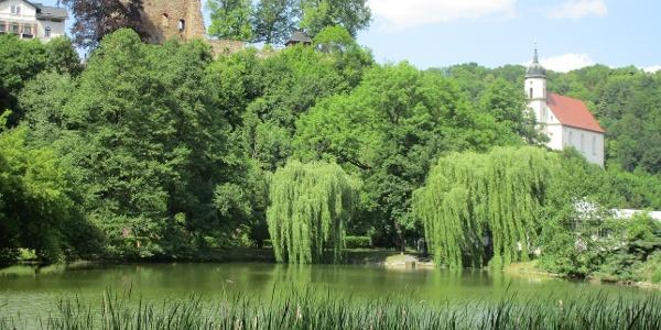 Blick zur Ruine in Tharandt