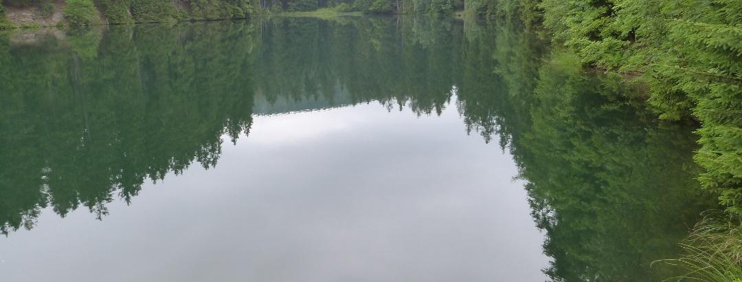 Schalker Teich