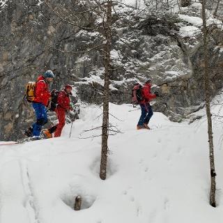 Schneefall beim Aufstieg über die Forststraße.